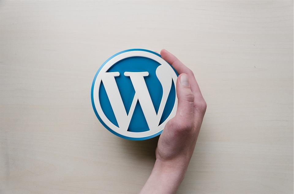 gambar ilustrasi wordpress